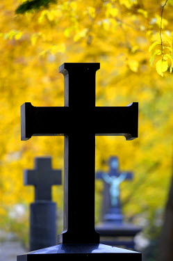 IBLSEI01357044 Tombstone with dark stone cross in front of colorful autumn leaves, Munich, Bavaria, Germany