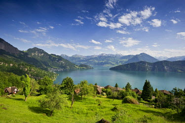 IBLDJS02367119 View over Lake Lucerne, near Weggis, Canton of Lucerne, Switzerland