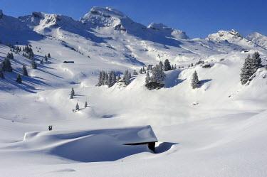 IBLSEI01508789 Alpine hut in wintry mountain landscape, Wildhaus, Appenzell district, Canton of St. Gallen, Switzerland