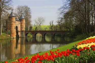 IBLGAB01152467 Grand-Bigard castle, tulip field, Brabant province, Belgium