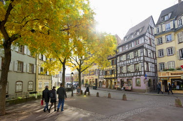 IBLDJS02077307 Half-timbered houses, old town of Colmar, Alsace, France