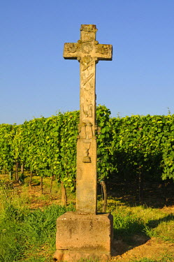 IBLGVA01672592 Stone wayside cross with inscriptions and figurative reliefs on the Alsatian wine road, Alsace, France