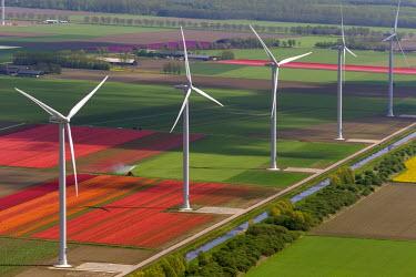 IBLBLO03731981 Wind turbines, tulip fields, Aerial view of Zeewolde, Flevoland, The Netherlands