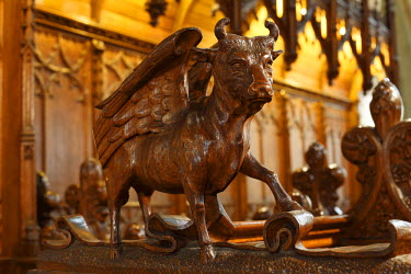 IBLMAN01572734 Winged bull carved from oak, choir stalls, St. Cainnech Cathedral or St. Canice's Cathedral, Kilkenny, County Kilkenny, Ireland