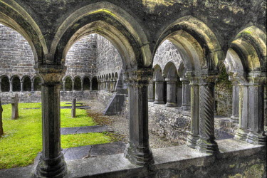 IBLMAN02163339 Cloister, Sligo Abbey, Sligo, County Sligo, Connacht, Ireland