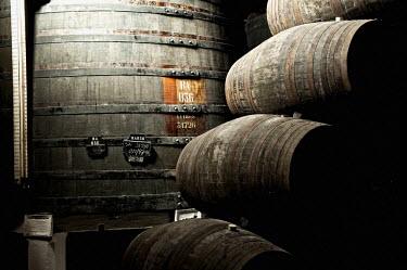 IBLGAB02124151 Barrels, Sandeman storehouse, Vila Nova de Gaia, Porto, Portugal