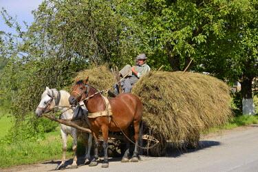 IBLHAN01847272 Hay cart, Maramures region, Romania