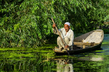 IBLFBD03714749 A man paddeling in a shikara boat on a canal near Dal Lake, Srinagar, Jammu and Kashmir, India