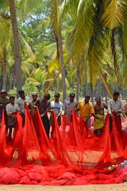IBLOMK02061564 Fishermen holding a red fishing net, near Kasargod, Kerala, Malabar Coast, southern India
