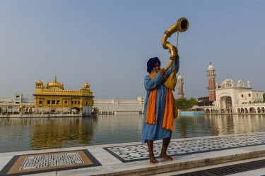 A Nihang, a member of an armed Sikh order, blowing a big brass horn, Harmandir Sahib or Golden Temple at the back, Amritsar, Punjab, India