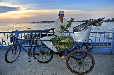 IBLGZS01180578 Man stacking many pineapples on the seat of a bicycle rickshaw, Mekong Delta, Vietnam