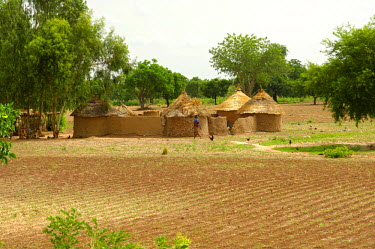 IBLGVA00878163 Typical African homestead with round huts, Burkina Faso, West Africa, Africa