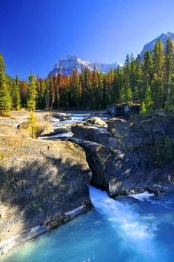 IBLGZS01010473 Waterfall at Mistaya Canyon, Banff National Park, Alberta, Canada
