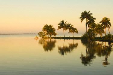 IBLGAB01859761 Laguna del Tesoro, Treasure Lagoon at sunrise, Zapata Peninsula, Cuba, Central America