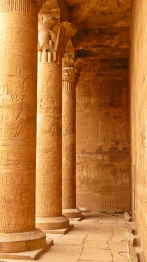 IBLGZS01175201 Columns in the Great Courtyard with hieroglyphics, Horus Temple, Edfu, Luxor, Nile Valley, Egypt, Africa