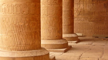 IBLGZS01175202 Columns in the Great Courtyard with hieroglyphics, Horus Temple, Edfu, Luxor, Nile Valley, Egypt, Africa