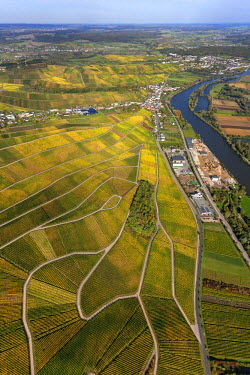 IBLBLO03088416 Aerial view of Moselle wine region, Moselle valley, vineyards of Schengen, Wellenstein, Schengen, Remich, Luxembourg