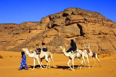 IBLGUF00259235 Tuareg with white Mehari riding dromedary, Acacus Mountains, Libya, Africa