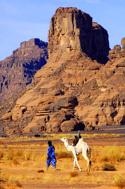 Tuareg nomade with white Mehari dromedary is roaming in the Acacus Mountains, Libya, Africa