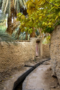 IBLGUF00568794 Irrigation canal in the oasis of Ghadames, UNESCO world heritage, Libya, Africa