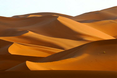 IBLSEI00722684 Sand dunes, Erg Chebi, Merzouga, Morocco, North Africa, Africa