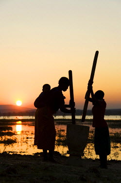 Tongan women in pounding grain on the shore of Lake Kariba, at sunset, Zambia, Africa