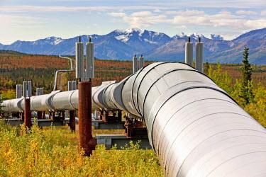 IBLVCH03721336 Trans-Alaska Pipeline, Fairbanks, Alaska, USA