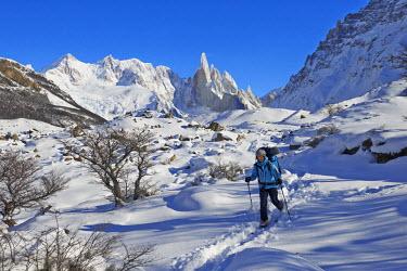 INT00946807 Argentina, Patagonia, Santa Cruz, El Chalten, Cerro Torre, Torre Egger, Aguja Standhart at sunset in winter