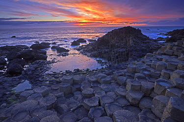 INT00973870 Great Britain, Northern Ireland, Antrim, Near Bushmills, The Giant's Causeway at sunset.