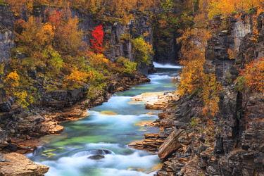 INT01098284 Sweden, Abisko canyon, Abisko national park, Lapland,