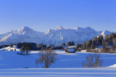 IBLMAN03460239 Winter landscape with the Tannheim Mountains, Tannheimer Berge, Rosshaupten, Ostallgau, Allgau, Schwabia, Bavaria, Germany