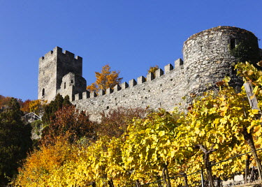 IBXMAN01733412 Hinterhaus castle ruins, town of Spitz, Wachau valley, Waldviertel region, Lower Austria