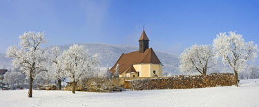 IBXHAN00623632 Church and frost-covered fruit trees, Schwarzensee, Lower Austria, Austria