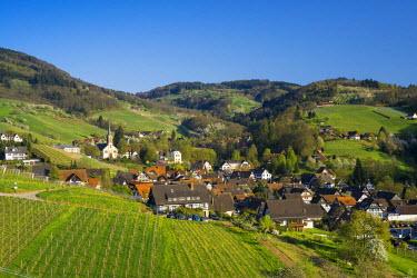 IBXDJS04301411 Sasbachwalden, Ortenau, Black Forest, Baden-Wurttemberg, Germany