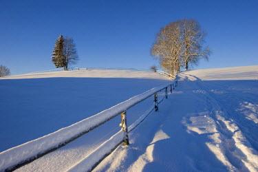 IBXMSI00024008 Snow covered landscape Peretshofen Upper Bavaria Germany