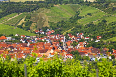 IBXMAN04196785 Townscape, Randersacker, Mainfranken, Lower Franconia, Franconia, Bavaria, Germany