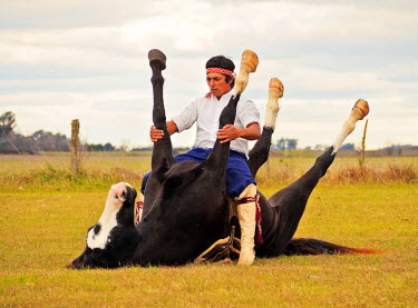 ARG2307AW Argentina,  Buenos Aires Province, Vagues, Gaucho Martin Tatta with presentation of Doma India, traditional indian horse training.