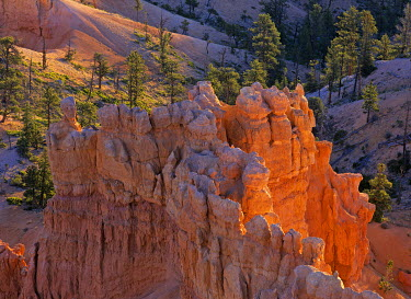 IBXCGH00127666 Rock formations of the Bryce Canyon at sunrise, Bryce Point, Bryce Canyon NP, Utah, USA, North America