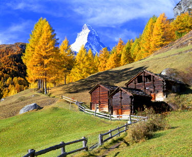 IBXDAB03922367 Wooden huts in front of larch trees with autumnal foliage and Mt Matterhorn, near Zermatt, Canton of Valais, Switzerland