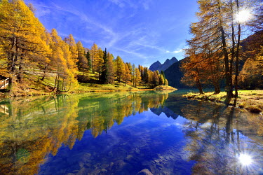 IBXDAB04014420 Sun and autumnally coloured larch trees reflected in lake Lei da Palpuogna, Albula Pass, Canton of Graub ���nden, Switzerland