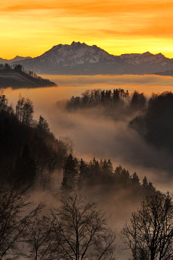 IBXSHU02119244 Foggy mood in the evening light with view on Mt. Pilatus, Zug, Switzerland