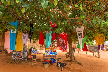 TOG0019AW Africa, Togo, Togoville. Shop under a tree selling cloths.