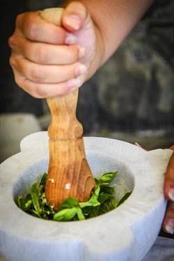 ITA9001AW Europe, Italy. Liguria. Preparing genovese pesto during a cooking course
