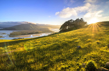 IBXGZS02317596 Grassland, Hoopers Inlet at the back, a bay on the Otago Peninsula, South Island, New Zealand, Oceania