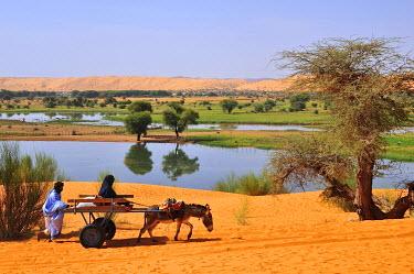 IBXGIV04194507 Donkey cart being pushed through the soft sand, Moudjeria, Tagant region, Mauritania, Africa
