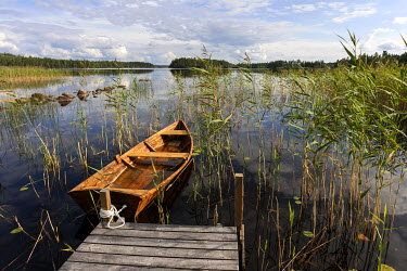 IBXHAL04028686 Boat dock with rowboat, reeds, lake in Smaland, Sweden