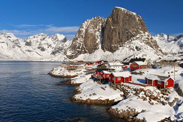 IBXOMK03909896 Traditional red wooden Rorbu houses, Reine, Moskenes v�y, Lofoten, Norway