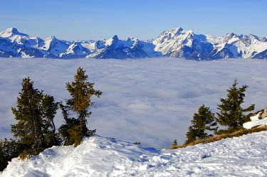 IBXGUF00077881 View towards the French Alps with Cornettes de Bise 2432 m across the clouds hanging over Lac Leman Chablais Switzerland France