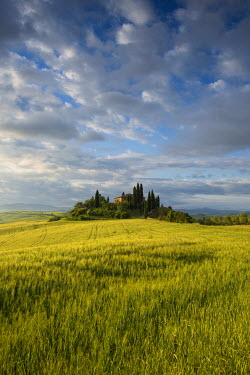IBXDJS03929983 Landscape with hills and farm with cypress trees, morning light, Val d'Orcia, UNESCO World Heritage Site, near San Quirico d'Orcia, Province of Siena, Tuscany, Italy