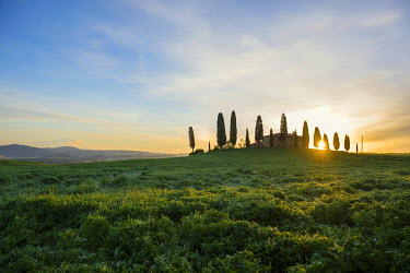 IBXDJS03946647 Farm with cypress trees, sunrise, UNESCO World Heritage Site Val d'Orcia, near Pienza, Province of Siena, Tuscany, Italy